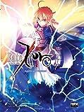 Fate. Zero - Livro 4