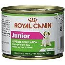 ROYAL CANIN Mini Junior - 195 gr