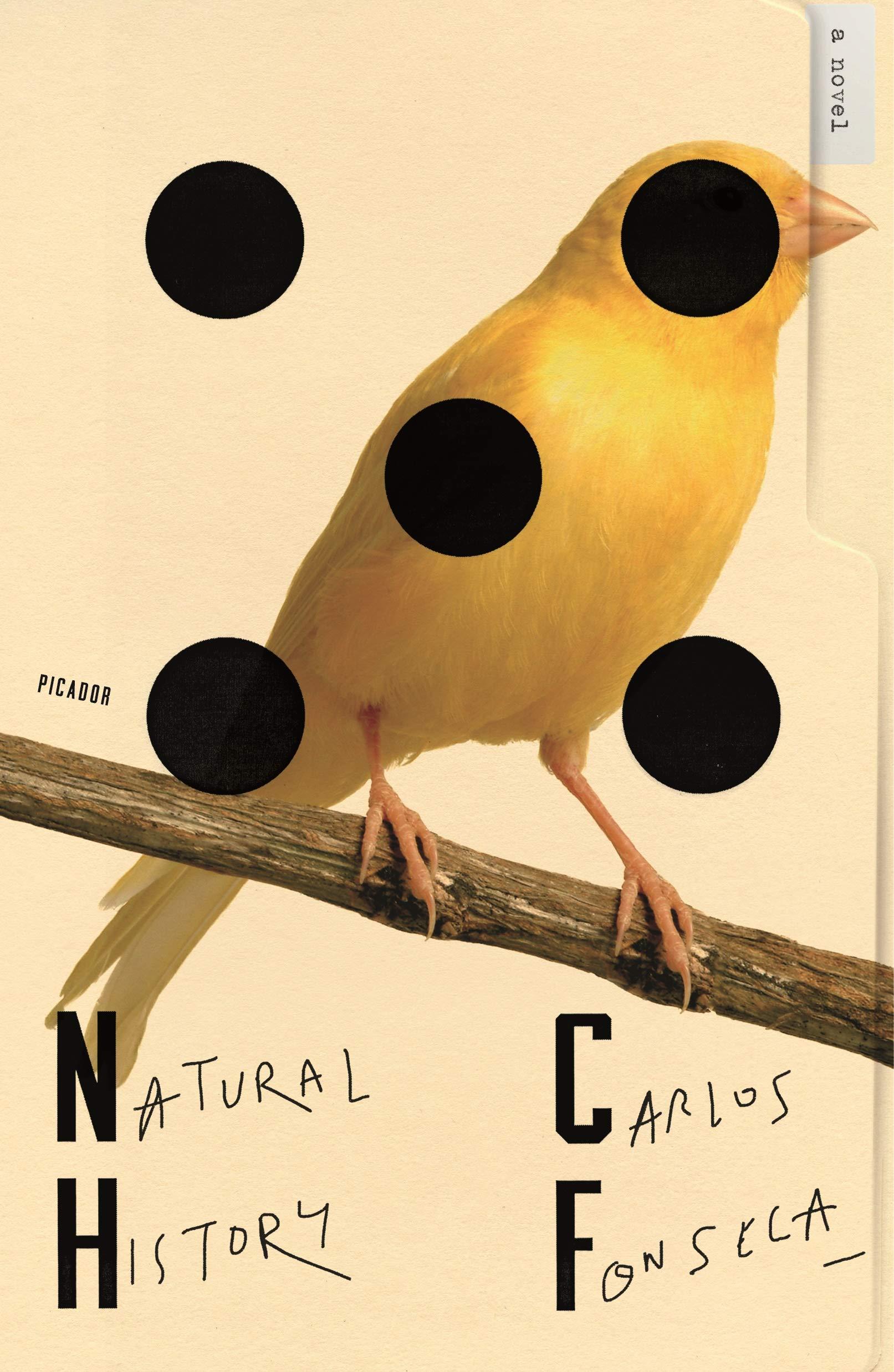 Natural History: Amazon.es: Fonseca, Carlos, McDowell, Megan ...