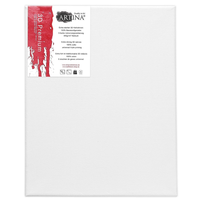 Calidad 3D Premium 380 g//m/² Artina Set de 5 lienzos Blancos de 100/% algod/ón con bastidores robustos 50x60 cm