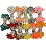 Asian Hobby Crafts Flower Making Pearl Shining Pollens, 500 Pieces (Pack of 10)