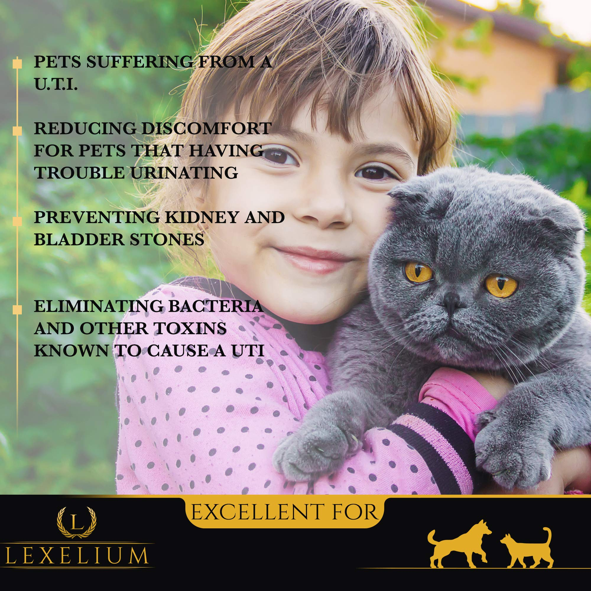 Organic Urinary Tract Infection (UTI) Support for Dogs and Cats | Fortified with Cranberry, D Mannose, and Curcumin | Strengthens Kidney & Bladder Function | Prevents Kidney/Bladder Stones | 200 G by Lexelium (Image #4)