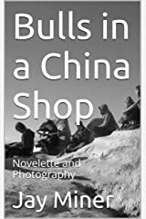 Bulls in a China Shop: Novelette and Photography