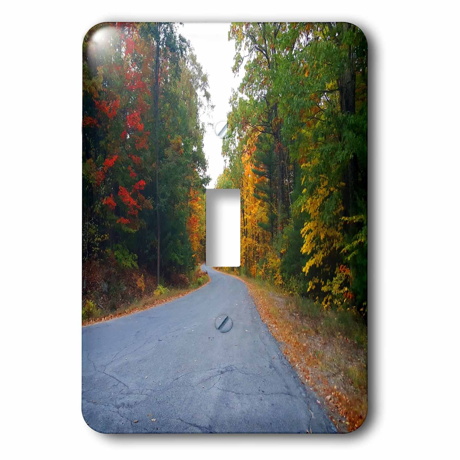 3dRose TDSwhite – Miscellaneous Photography - Winding Country Road Distance - Light Switch Covers - single toggle switch (lsp_285451_1)