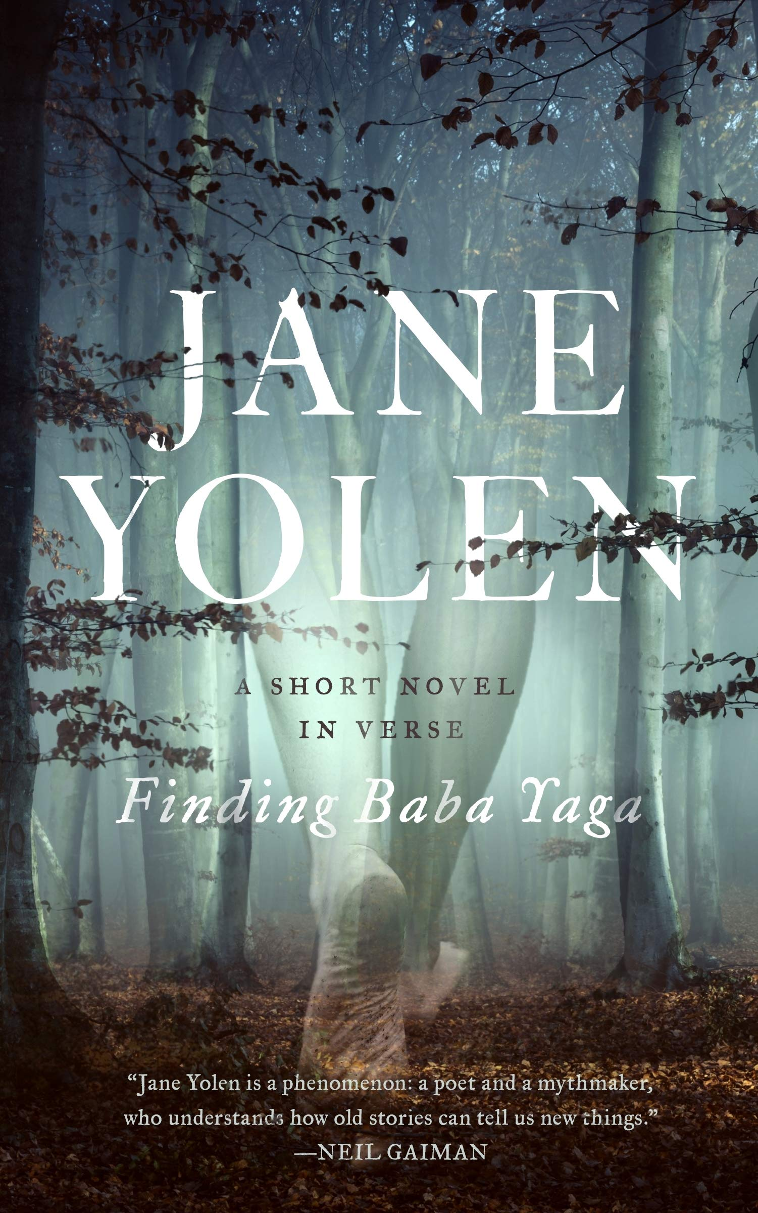 Image result for finding baba yaga