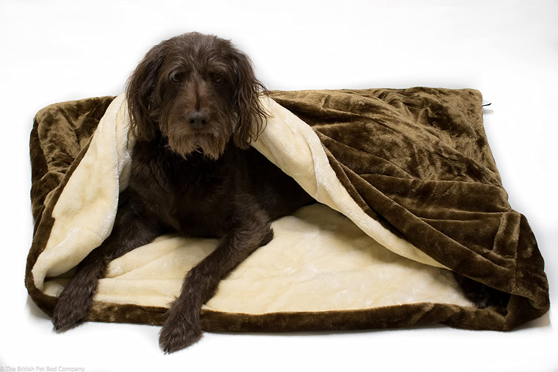 Saco de dormir para mascotas - Cama para gatos o perros Lolas Pet - Chocolate, marrón y crema: Amazon.es: Productos para mascotas