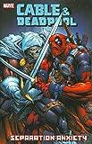 Cable & Deadpool - Volume 7