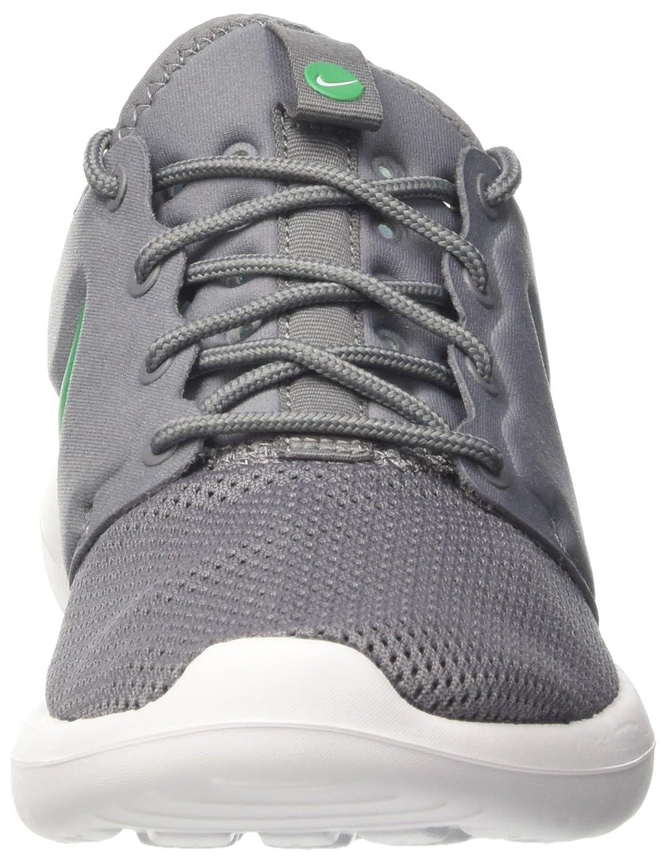 Nike Hombres Azul Blanco Roshe Dos Corriendo B00cwb0ovk Zapato Gris Cool Gris Zapato a09231