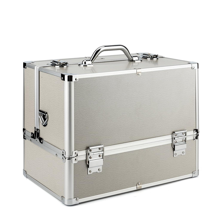 AMASAVA Mallette Maquillage Beauty Case avec cloison Valise Maquillage Coffret cosmétique Boîte à Maquillage, avec Bretelle et clé Coffrets Professionnelle - 37.5 × 24 × 28.5cm(Argent)