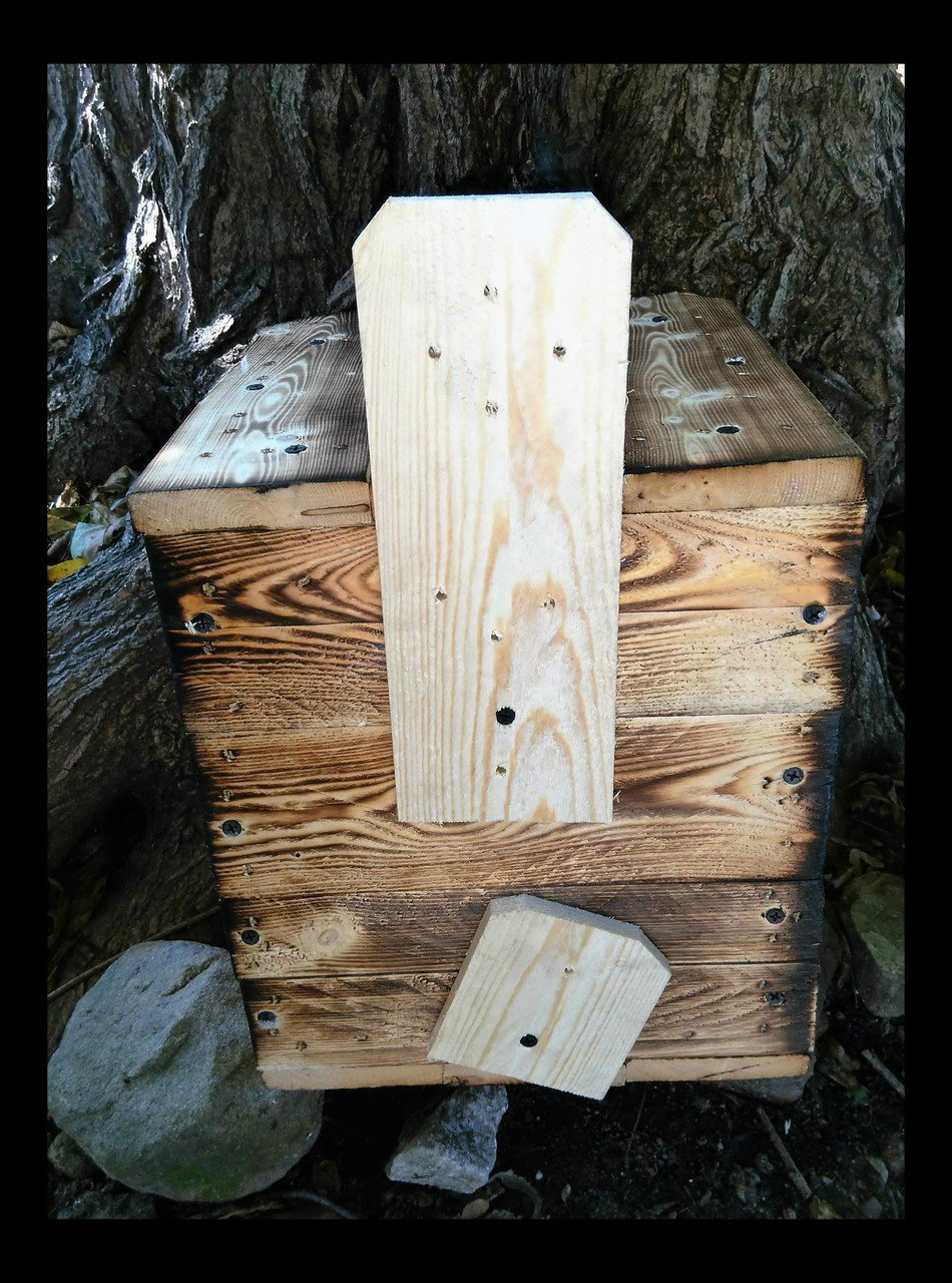 Holley Flying Squirrel House.1 unit FLYING SQUIRREL FAST 2 nd WORK DAY SHIPPING.BUILT BY U.S.A. VETS AND U.S.A. RAW MATERIALS.Nesting material,instructions included plus one on one help via phone by Holley (Image #3)