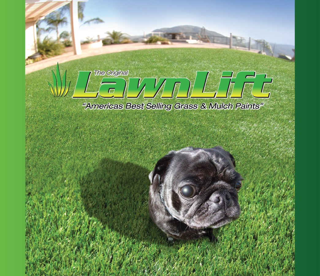 Lawnlift Ultra Concentrated (Green) Grass Paint 5 Gallon Case = 55 Gallons of Product. by LawnLift