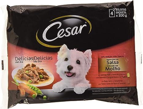 Cesar Comida en Bolsita para Perro con Buey -Pack de 4 x 100 g ...