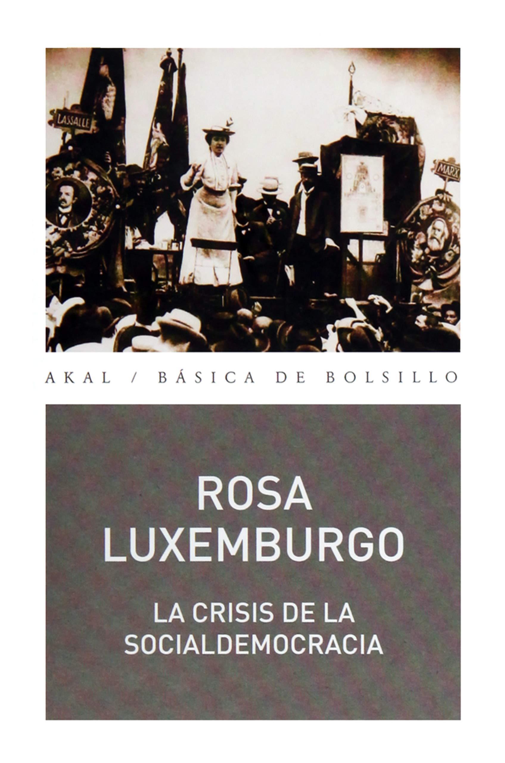 La crisis de la socialdemocracia: 332 Básica de Bolsillo: Amazon ...