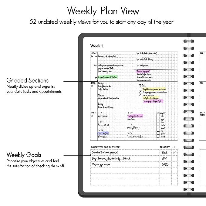 Amazon.com: Planificador sin fecha-colores: Office Products