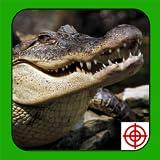 Crocodile Hunter 2014 offers