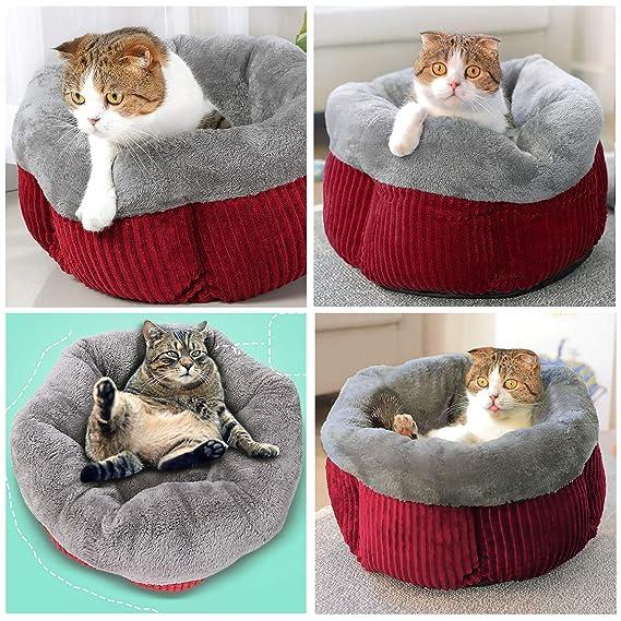 Legendog Cama Gato, Deluxe Acogedor Cómodo Fleece Mascotas Perro Camas Interior Gato Nest Sleeping Bag para Gatos y Perros Pequeños: Amazon.es: Hogar