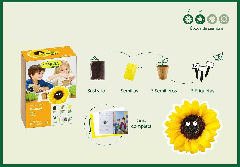SEMBRA - juego educativo, Kit huerto Orégano: Amazon.es: Jardín