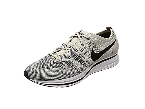 0433352fd29837 NIKE Flyknit Trainer  Pale Grey  - AH8396-001  Amazon.co.uk  Shoes ...