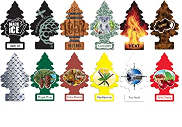Little Trees Home and Car Air Fresheners 12 Pack Most Popular Masculine  Scents