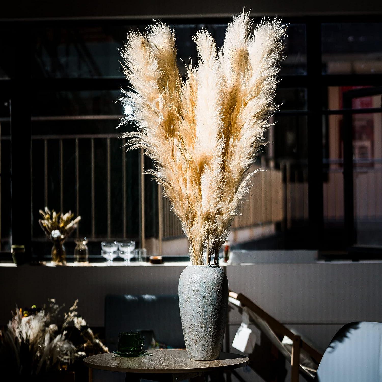Shophulic Natural Dried Pampas Grass- 5 Stems, 48 Inches (4 Feet), Pampas Grass Large for Vase-Pampas Grass Plants- Home Decor-Pampas Grass Decor (Beige Color)
