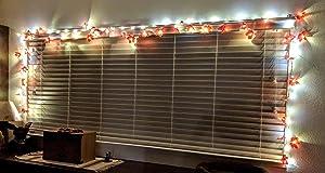 Great little lights!