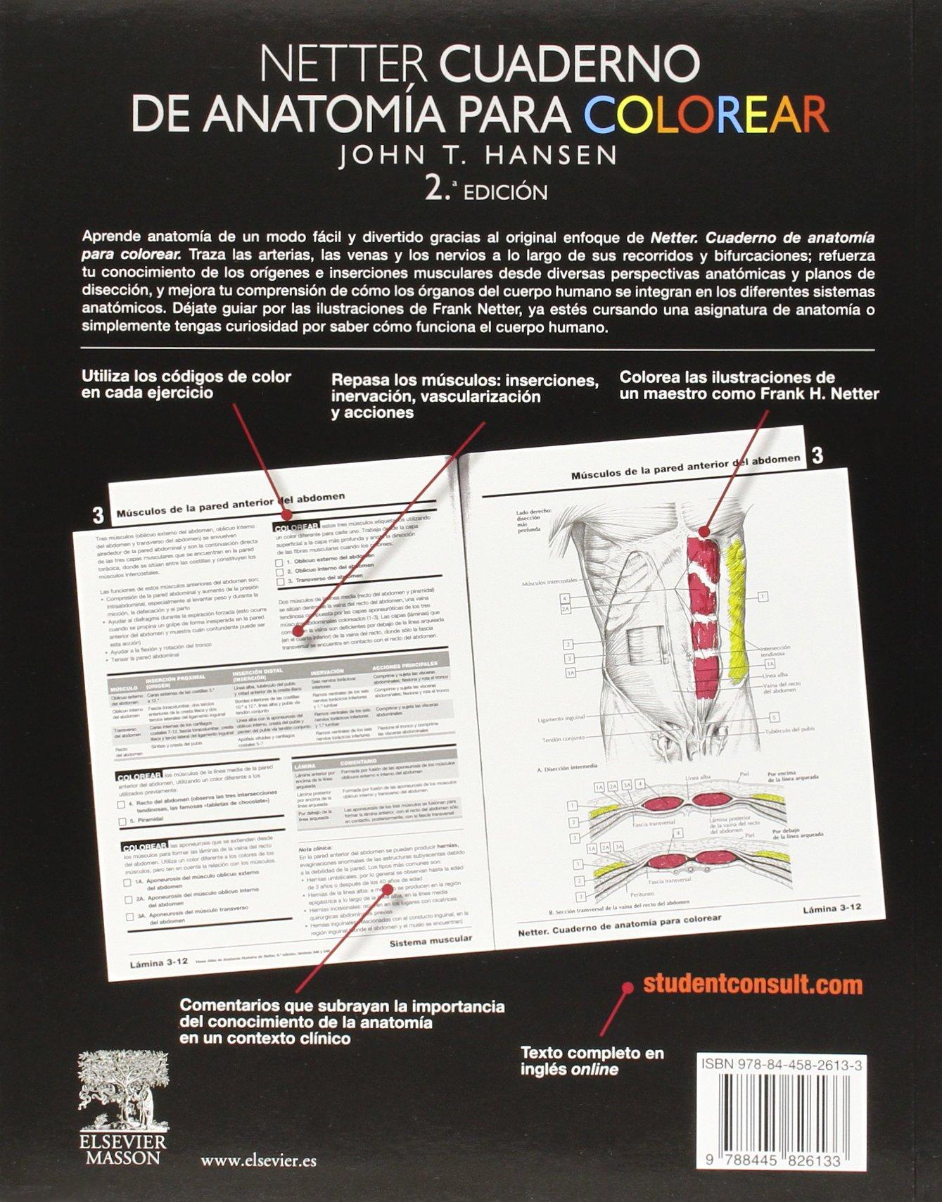 Netter. Cuaderno De Anatomía Para Colorear - 2ª Edición + ...