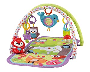 Fisher-Price 3-in-1 Musical Activity Gym