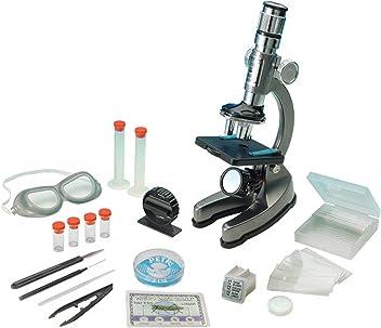 Eduscience - Microscopio (100 x 900 mm, con luz y proyector ...