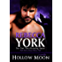 Hollow Moon (Decorah Security Series, Book #17): A Paranormal Romantic Suspense Novella