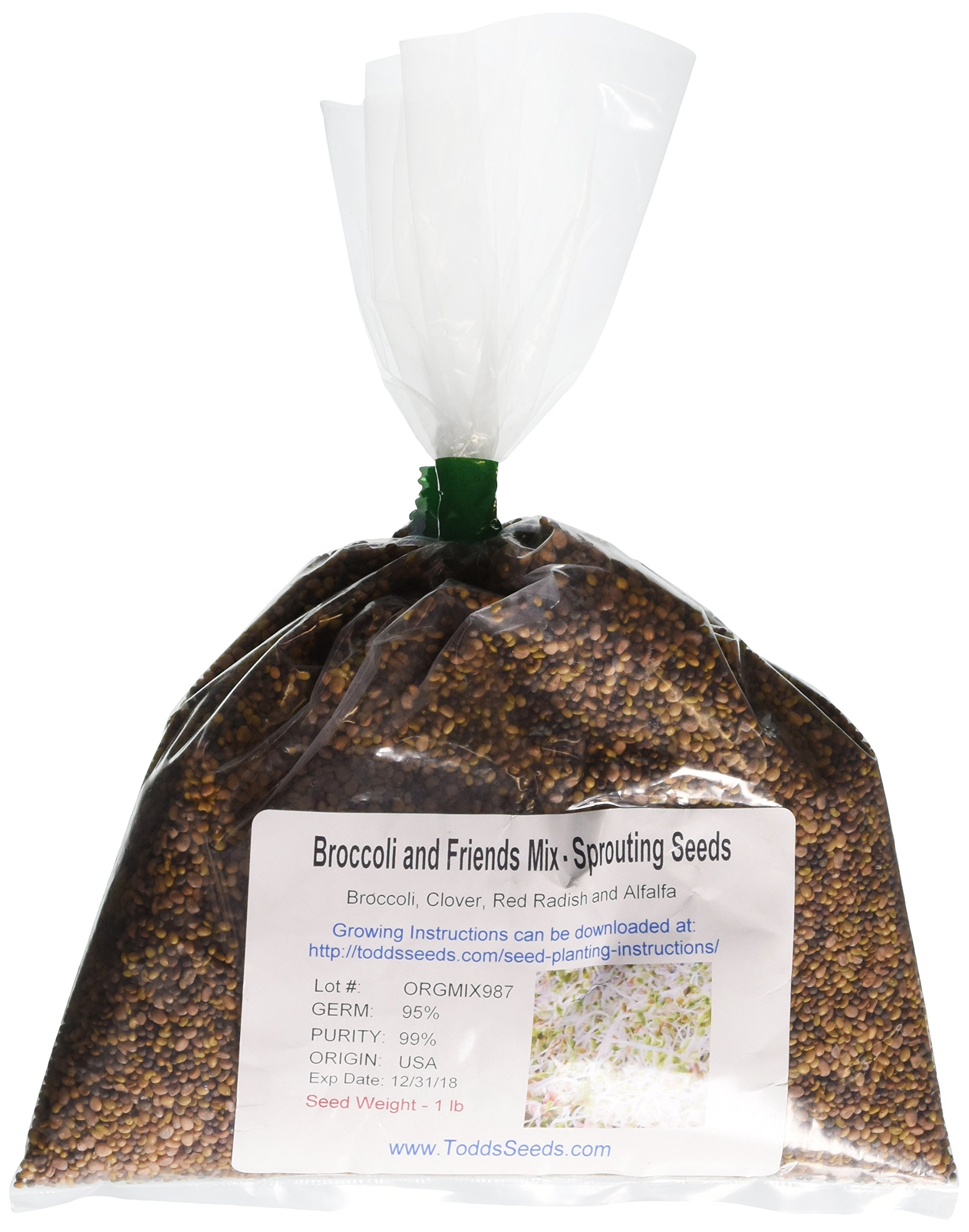 Broccoli and Friends Sprouting Seed Mix, One Pound by Todd's Seeds