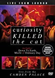 Curiosity Killed The Cat - Live From London [DVD] [2013] [NTSC]