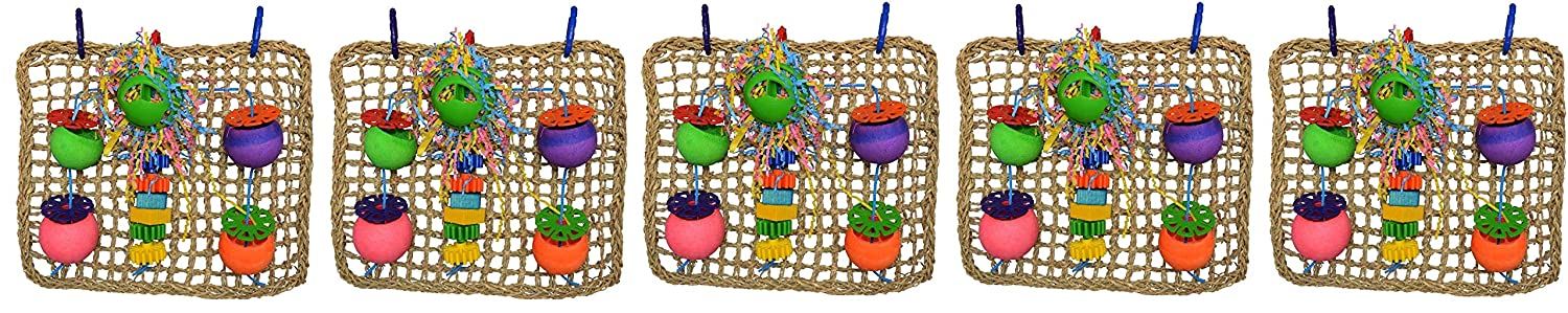 Super Bird Creations Seagrass Foraging Wall Toy for Birds SB746