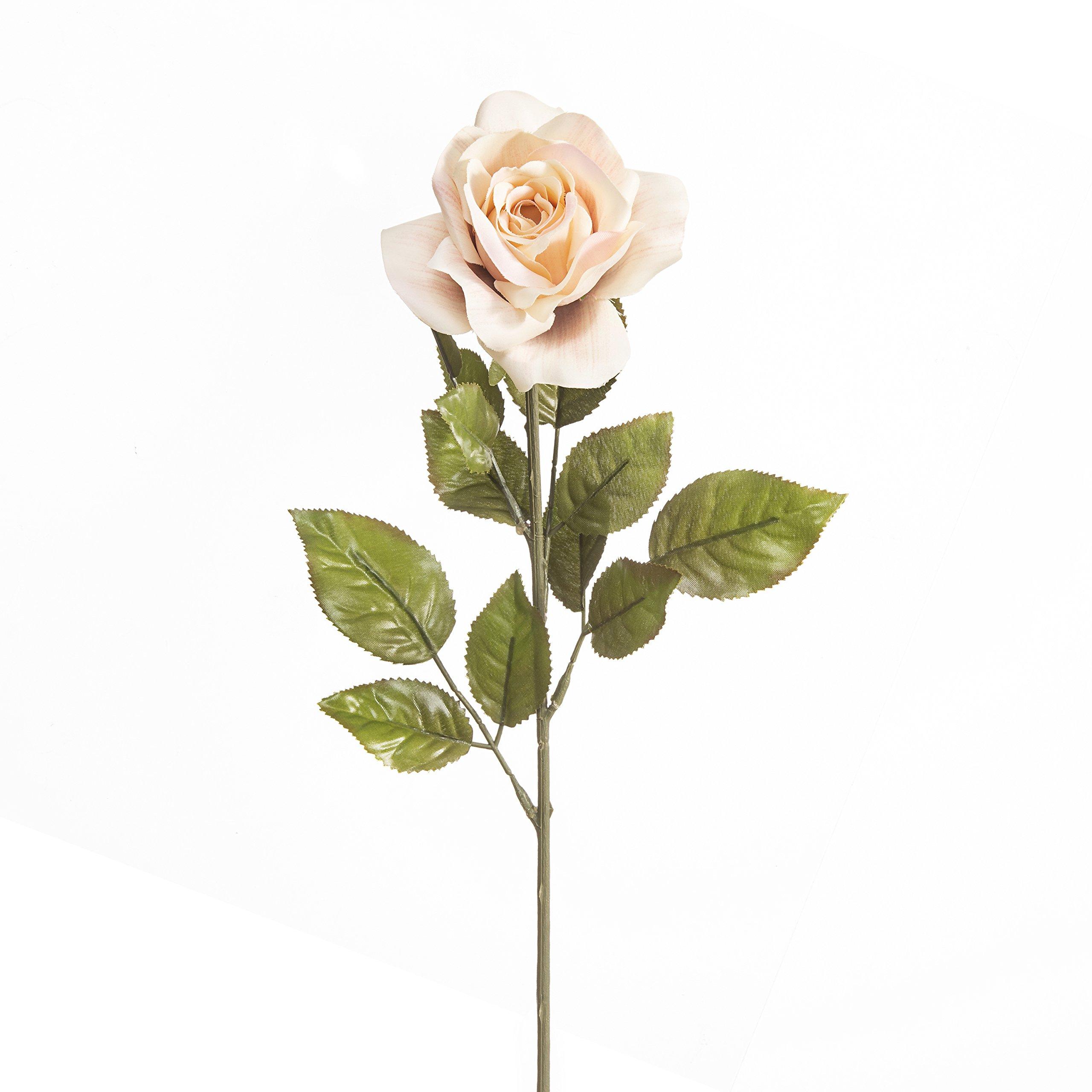 Darice 703475-702CRMV Everyday Long Stem Rose, 25'', Cream Mauve