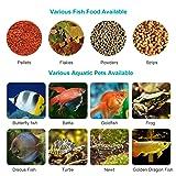 Atman Automatic Fish Feeder,Auto Fish/Turtle Feeder Aquarium&Fish Tank Food Timer Vacation&Weekend Fish Food Dispenser