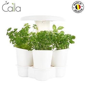 Calla Garden - Jardin d\'intérieur automatisé Made in Belgium ...