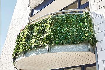 Amazon De Aktivshop Balkon Sichtschutzhecke Sichtschutz Balkon