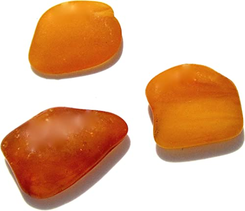 Natural Baltic Amber Tiny Loose Gemstones Set of 10 Ian and Valeri Co