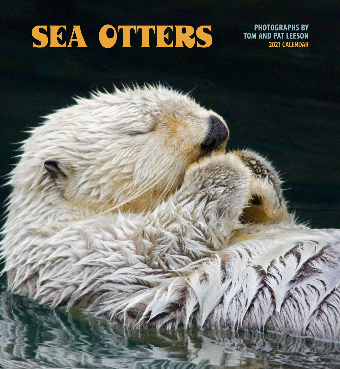 Otter Calendar 2021 Sea Otters 2021 Wall Calendar: Tom and Pat Leeson, Pomegranate