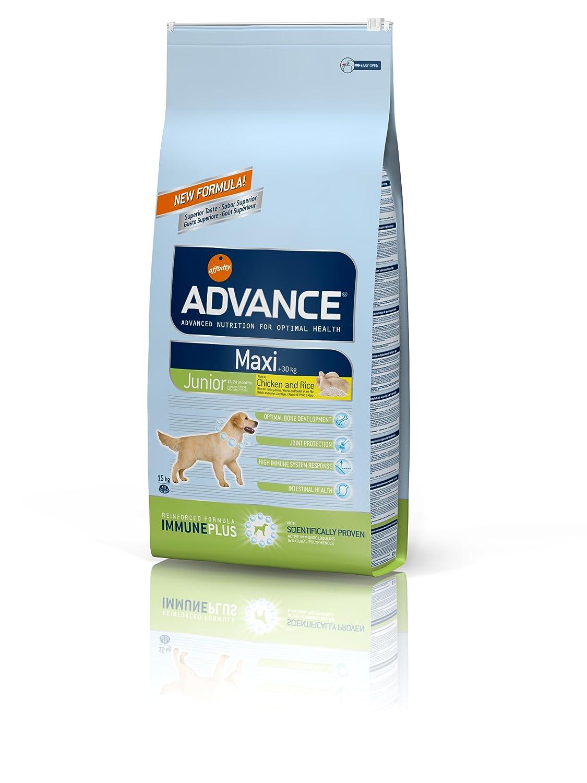 Advance Croquettes pour Chien Adulte Bulldog Poulet et Riz 12 kg 535510