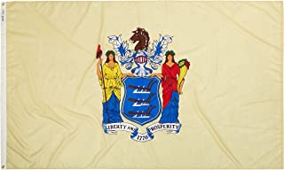 product image for Annin Flagmakers Model 143680 New Jersey Flag Nylon SolarGuard NYL-Glo, 5x8 ft, 100% Made in USA to Official State Design Specifications
