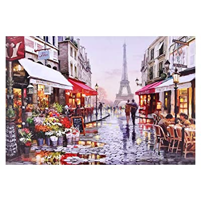 1000 Pieces Jigsaw Puzzles Large Puzzle Paris Street Jigsaw Puzzle for Adults and Kids, Home Decor: Toys & Games