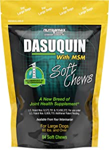 Nutramax Dasuquin with MSM Soft Chews