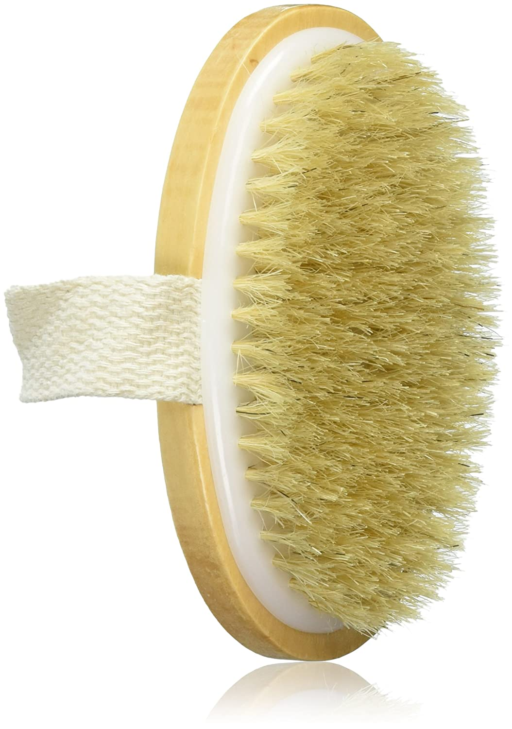 FantaSea Natural Bristle Body Brush, Pack of 4 FSC634