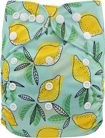 Fox+1 Insert Ohbabyka Reusable Washable Baby Boys//Girls Pocket Cloth Diapers with 1pc Insert