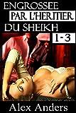 Engrossée par l'héritier du Sheikh 1-3: BDSM, Mâle dominant Alpha, Histoire érotique de femme soumise