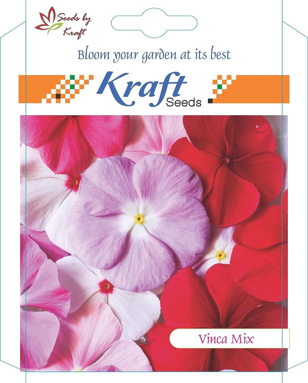 Vinca Mix Flower Seeds by Kraft Seeds: Amazon.in: Garden & Outdoors