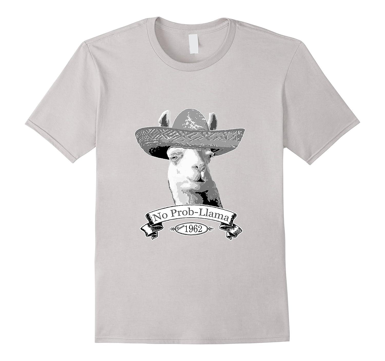 54th Birthday Gift T-Shirt - 1962 Age 54 Llama Hipster Shirt-BN