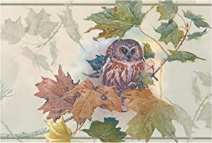 Prepasted Wallpaper Border - Owl Nature Wall Border Retro Design, Roll 15 ft. x 7 in.