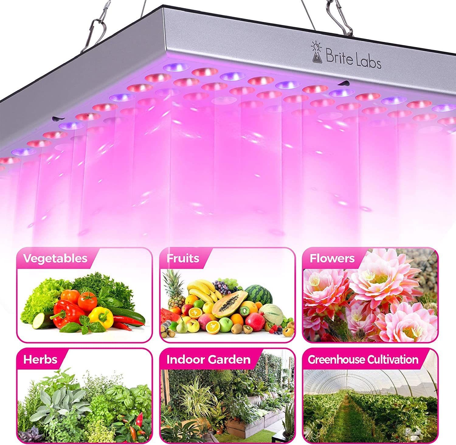 45W Plant Growing Lamps with 144 Full Spectrum LEDs Bulb Hanging Growth Light Fixtures Propagator for Seedling Succulents Flower /& Hydroponic Greenhouse Brite Labs LED Grow Lights for Indoor Plants