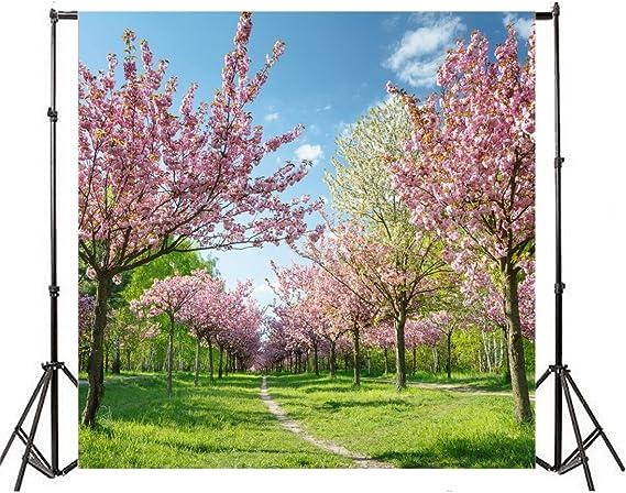 Aofoto Hintergrund Kirschblüten Kirschblüten Kamera